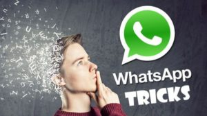 5-important-tips-and-tricks-every-whatsapp-group-user-should-know