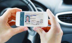driving-licence-renewal